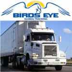 Security Systems: Bird's Eye Global Tracking