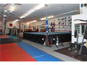 120600171-artes marciales