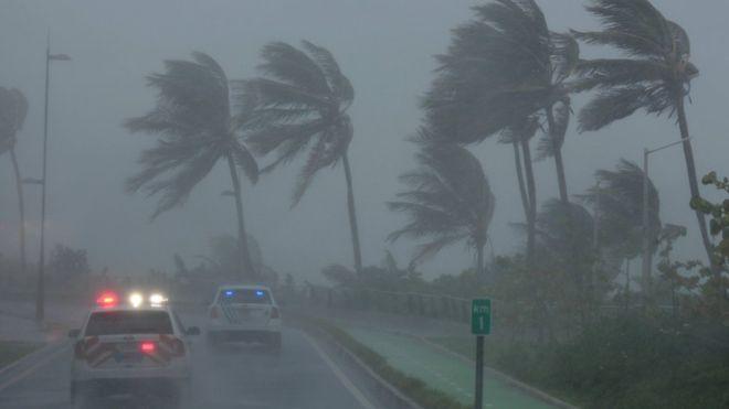 Irma deja sin servicio eléctrico a más de 800 casas en Florida